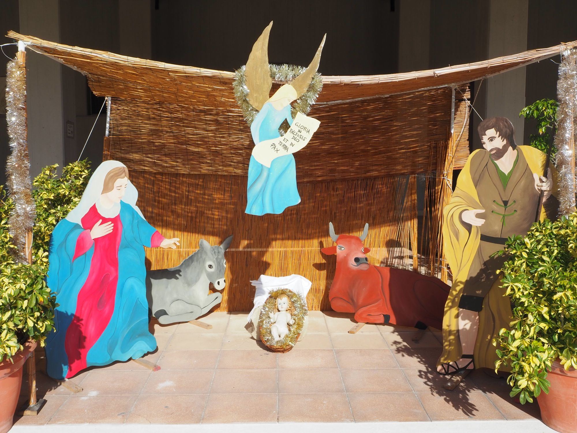 Celebrazioni del Santo Natale 2020 al Santuario della Madonna delle Lacrime di Siracusa