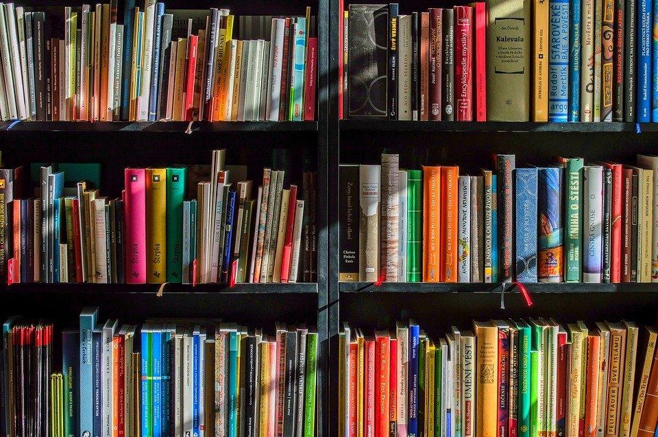 librovunquepalermo-1579706479.jpg